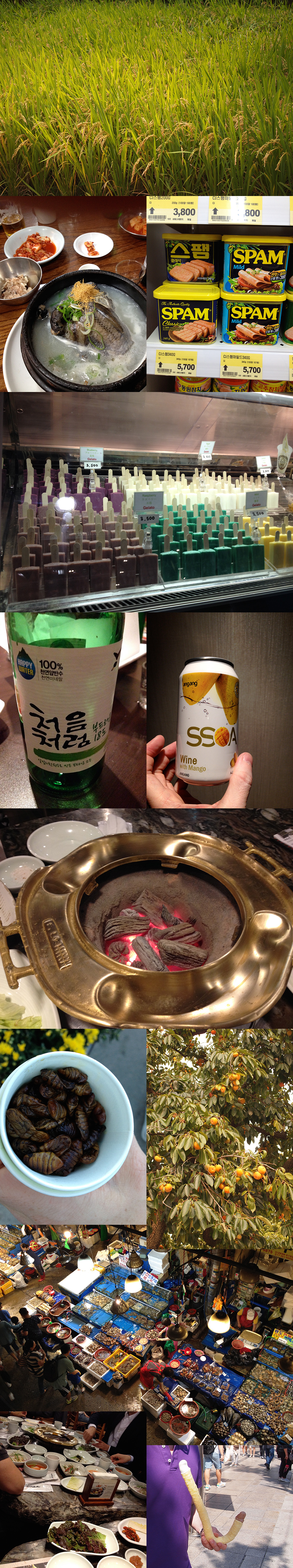 "Eat & drink in Korea - from top to bottom, left to right: rice, chicken hangover soup with black chicken and wild ginseng (kimchi - see top left image corner), ""spam"" (canned ham), ice cream in weird colors on sticks, Soju (national drink No.1, a kind of light vodka-y beverage - I like the fact they label it ""Happy Water"" ;-)), wine with mango (Asia is not really good with wines, no sir!), table coal bbq, silkworm larvae (yumyum), persimon, all kinds of sea monsters at Noryangjin fish market, table bbq with endless amounts of dishes in bowls, and finally: the mysterious double-ended whale-penis icecream :-D"