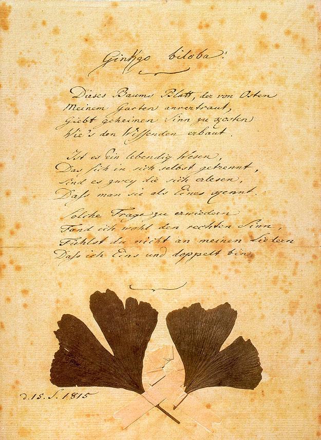"Goethes Gedicht ""Gingo biloba"""