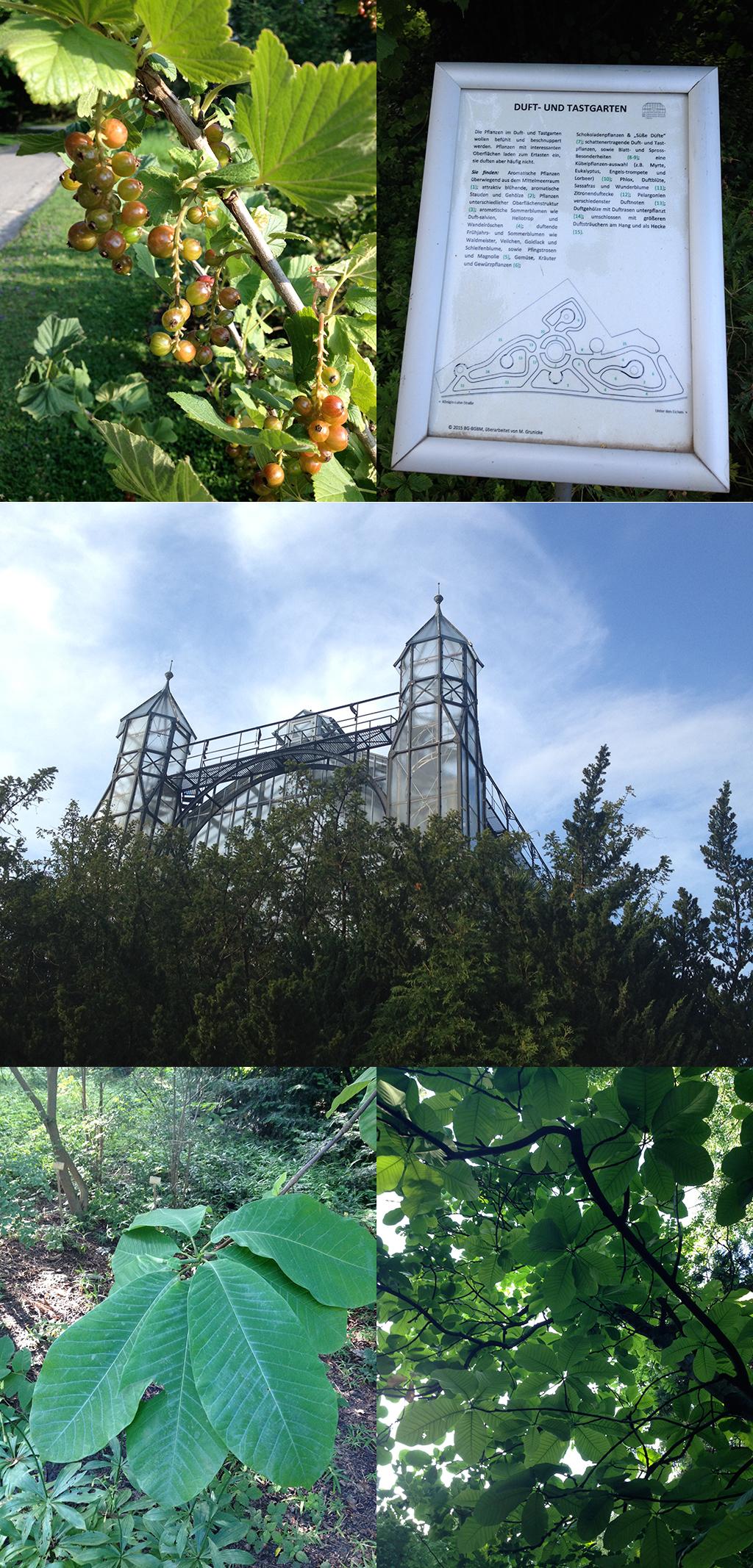 Botanischer Garten Berlin-Dahlem